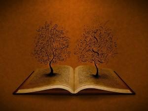 Kitap 1-2
